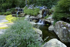 LANDSCAPE DESIGN OF WATERFALLS AND STREAM