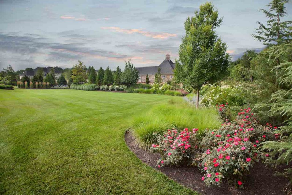 leesburg-landscape-maintenance-garden-management