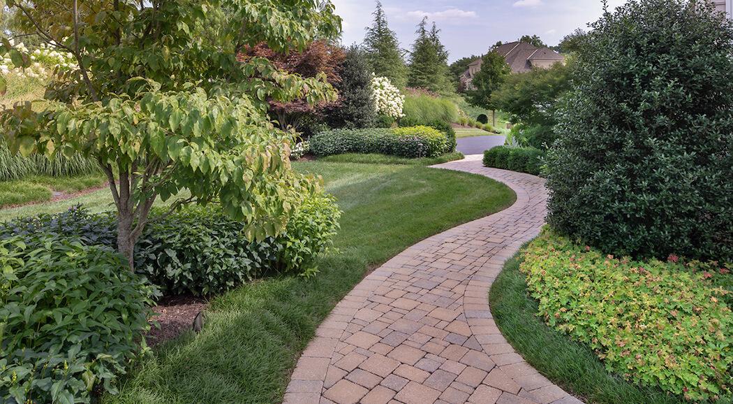curving paver walkway