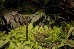 LED outdoor lights preserve true color