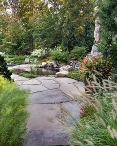 flowering perennial grasses and ferns