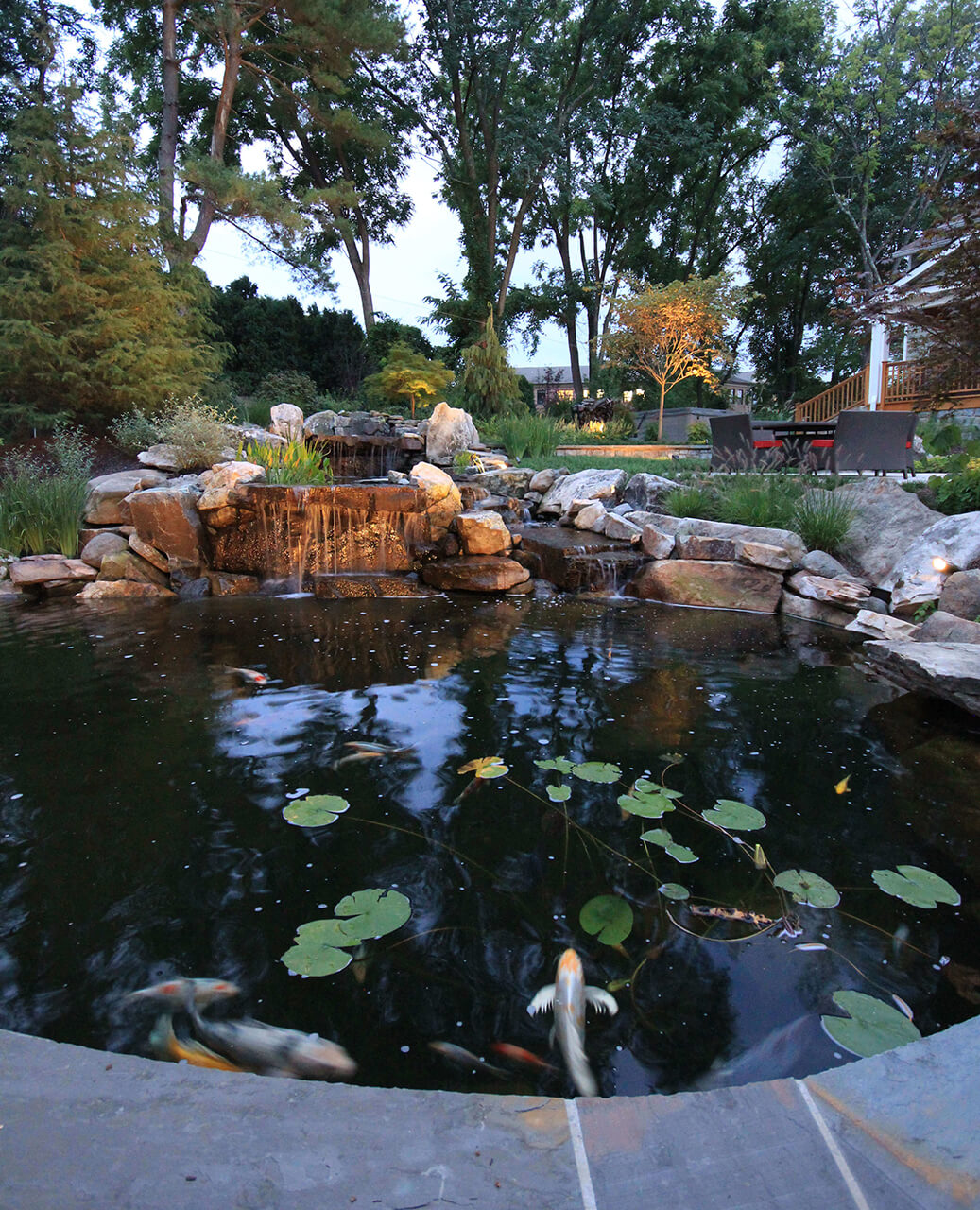 garden koi pond with waterfall