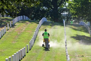 landscape-maintenance-at-renewal-and-remembrance-2015