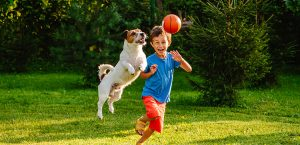 boy and dog playing on open lawn