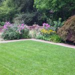 formal style backyard lawn and border plantings