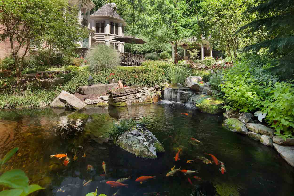 The essentials of koi pond design maintenance in for Koi holding pool