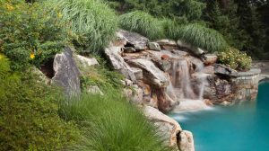 landscape maintenance for wild garden and Waterfall