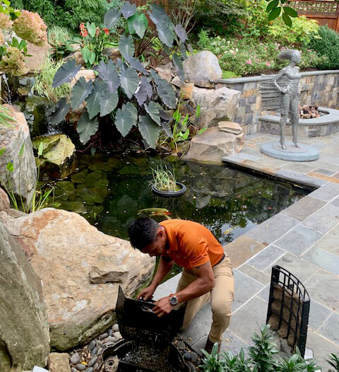 garden care technician-servicing pond filtration