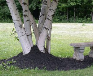 mulch volcanoes are harmful