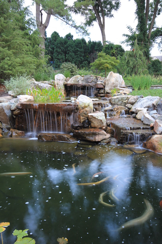 garden koi pond and triple waterfall