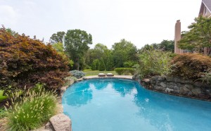 wydler lagoon style pool great falls va