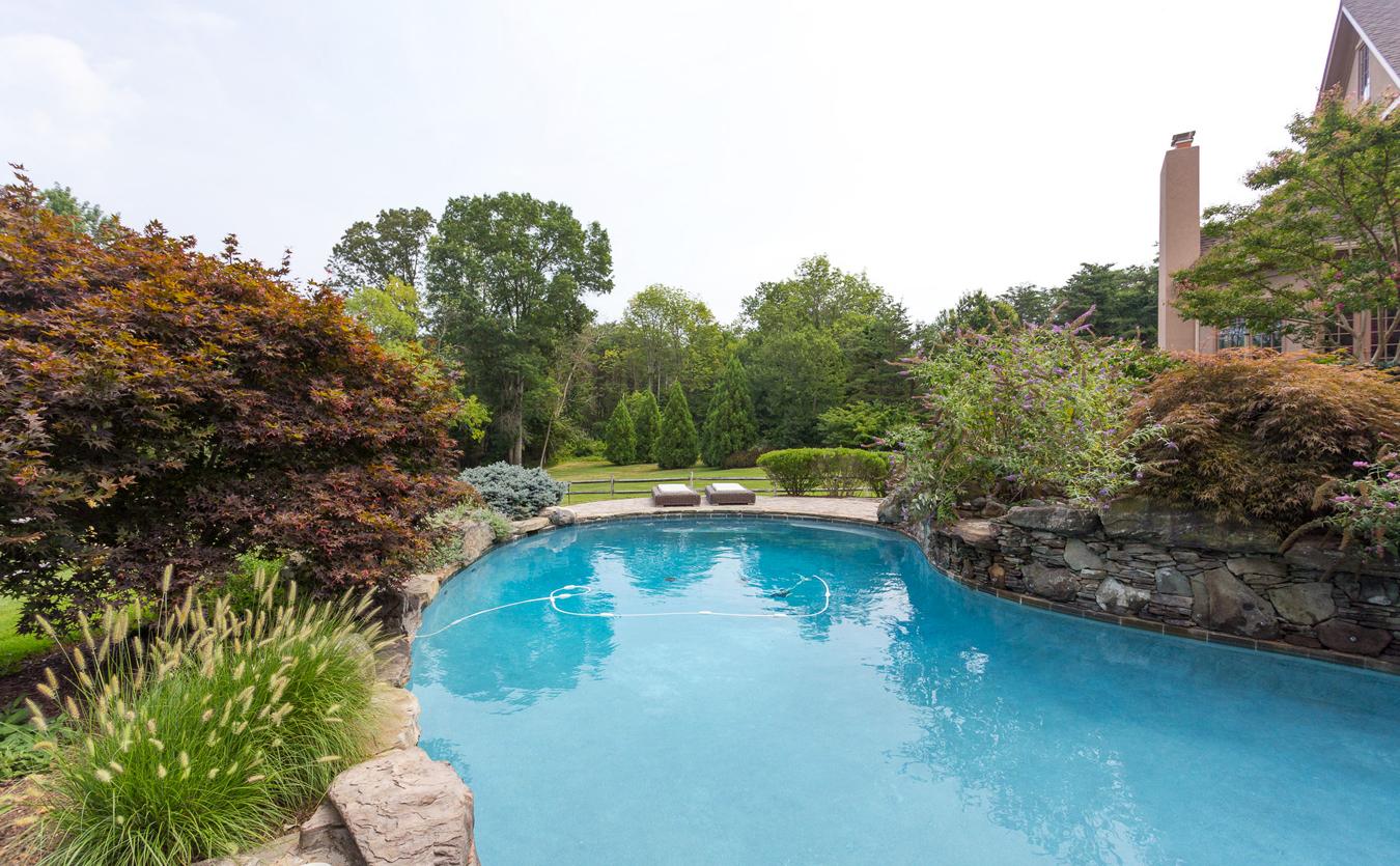 wydler-lagoon-style-pool-great-falls-va