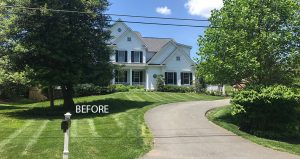 outdated front yard landscaping BEFORE
