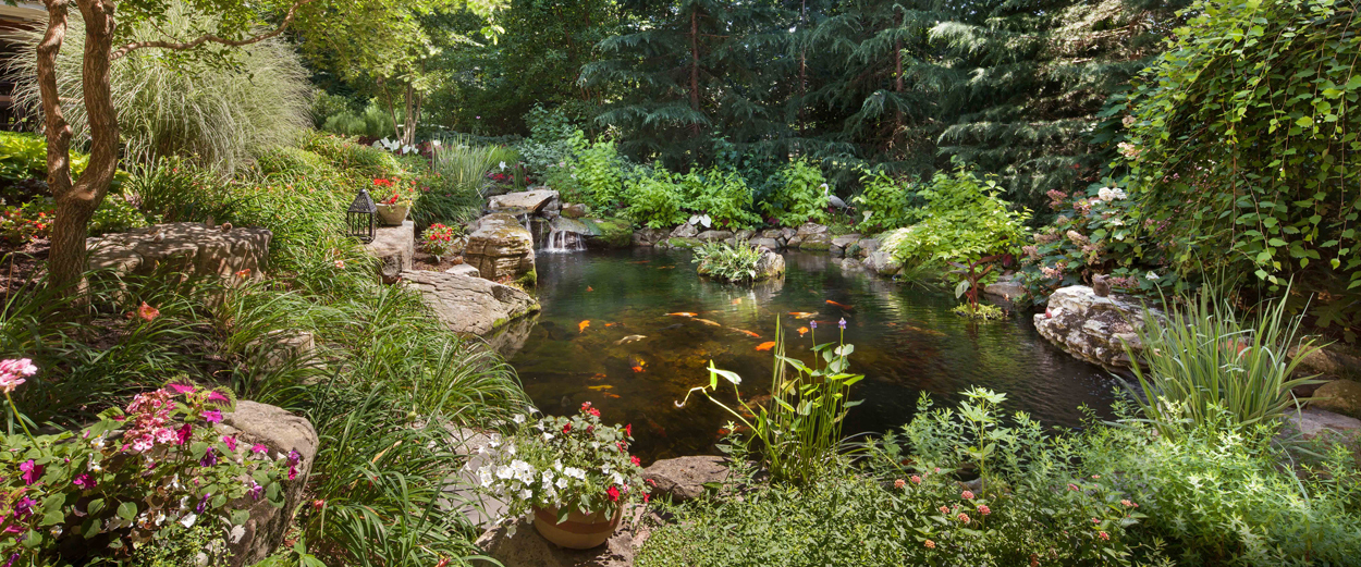 waterfall and pond-in-woodland-setting