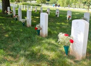 headstones & flowers arlington national cemetery