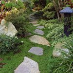 groundcover in stepping stone pathway