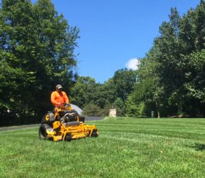 landscape maintenance mowing at proper height