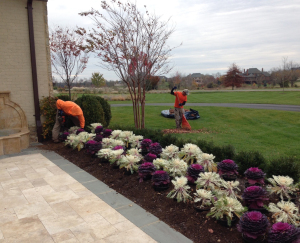 specialty landscape maintenance & garden care