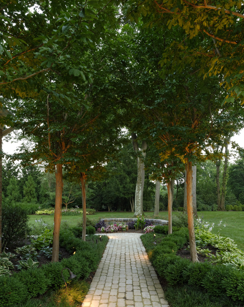 garden design with allee of crape myrtles