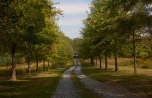 McInturff landscape design master plan precedes home design plan