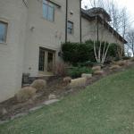 Site BEFORE Landscape Design