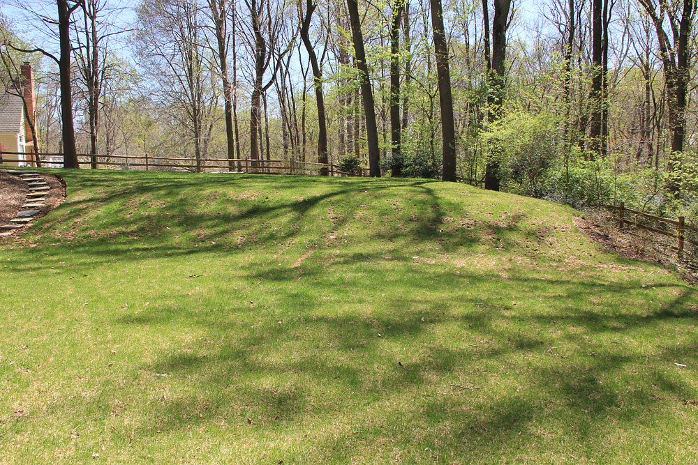 Parkview Hills backyard - before