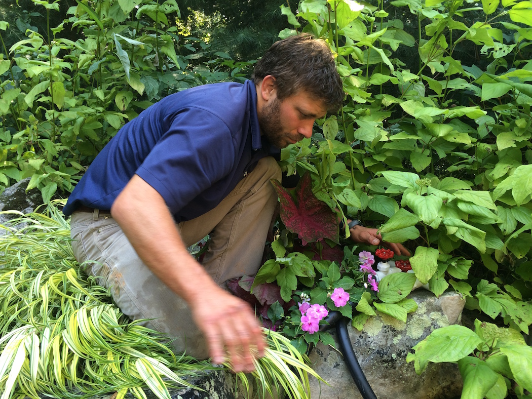 surrounds landscape maintenance director tom kniezewski