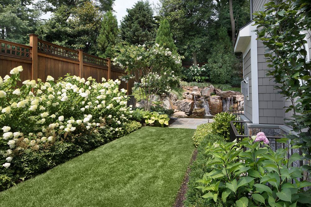 Bethesda Residence side yard landscaping