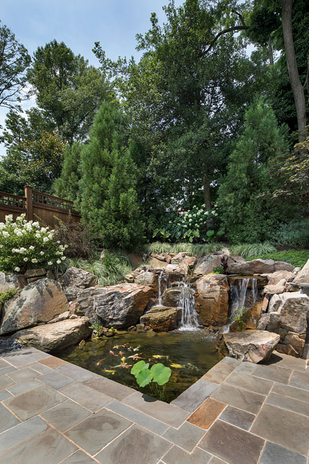 Bethesda Residence backyard waterfall
