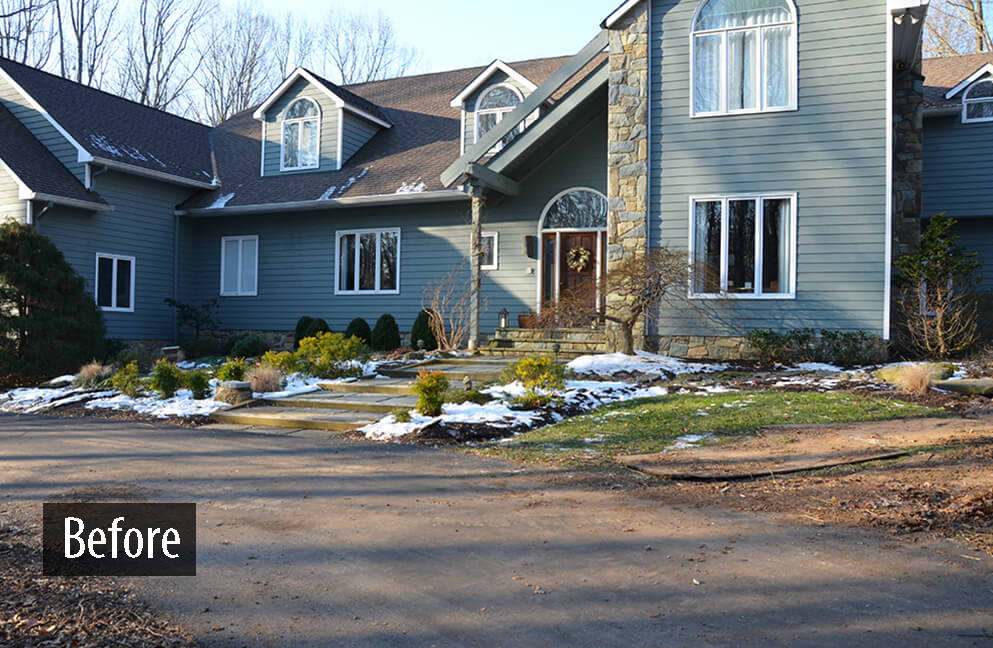 front yard BEFORE corrective drainage