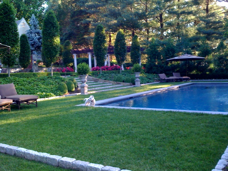 landscape maintenance formal gardens and pool