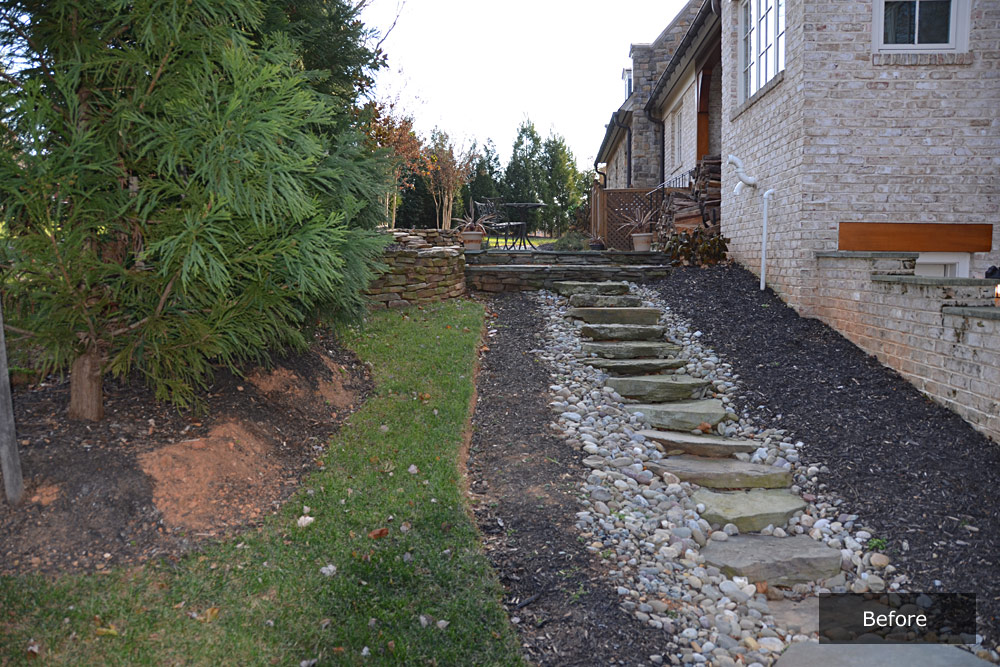 Red Bard side yard Before