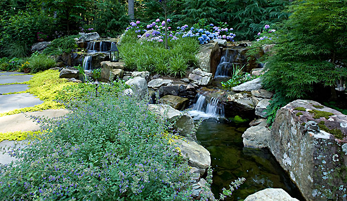 Image Result For Water Garden Designs Pictures
